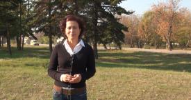 Какво трябва да правим при ПТП – видео